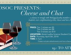 Cheese & Chat: Meet your Profs!
